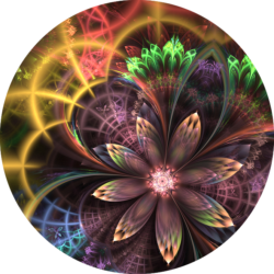 Matrizca fleur quantique